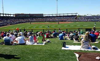 Spring Training Baseball Guide