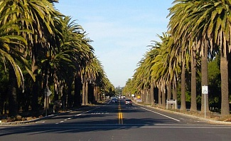 Sites to Explore in Palo Alto California