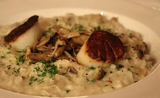 Scallops and mushrooms risotto