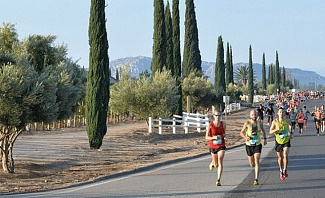Wine Country Half Marathon Temecula