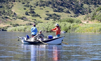 Catching Trout While Fly Fishing in Montan