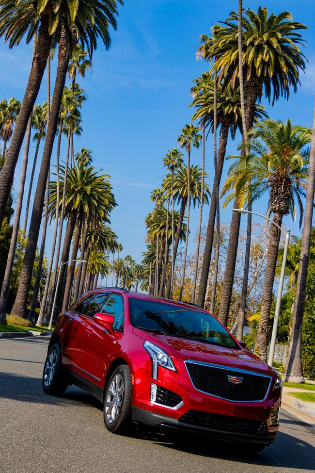Cadillac XT5 in Beverly Hills, California - exploring celebrity homes and palm tree lined streets