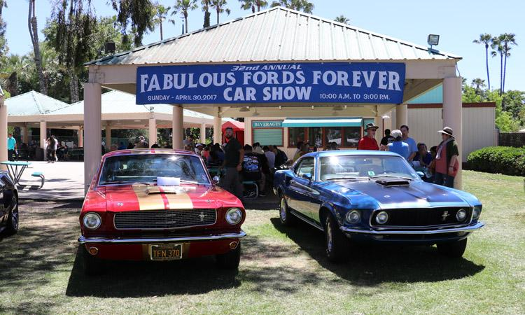 fabulous fords forever mustangs