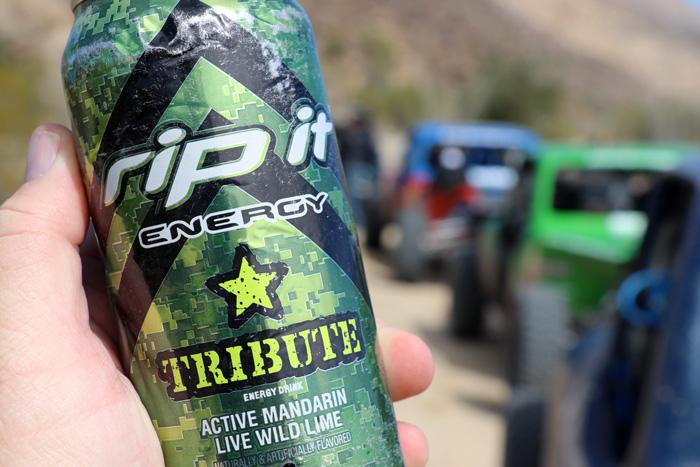 tribute active mandarin rip it energy keeps you going in baja