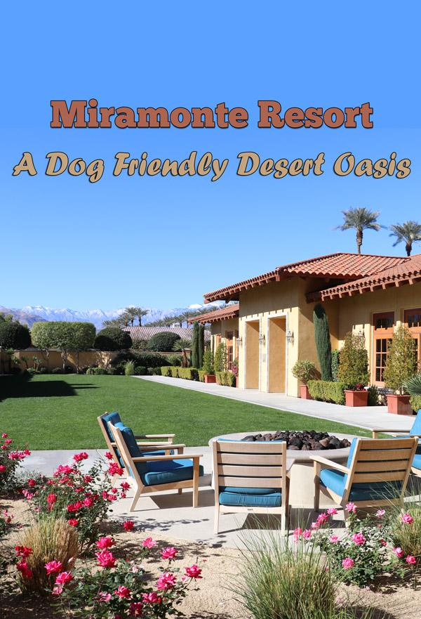 miramonte resort indian wells california is a fantastic dog friendly resort