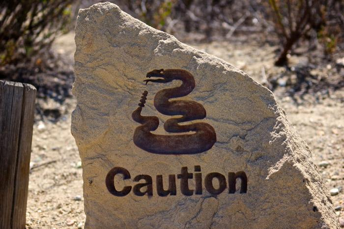 caution rattlesnakes sign