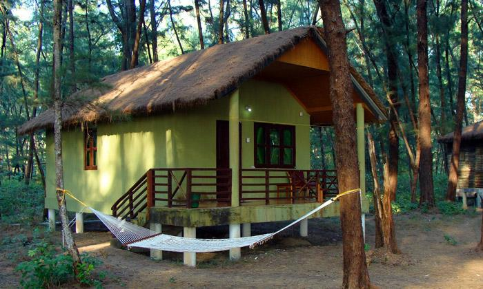 eco resort cabin with hammock