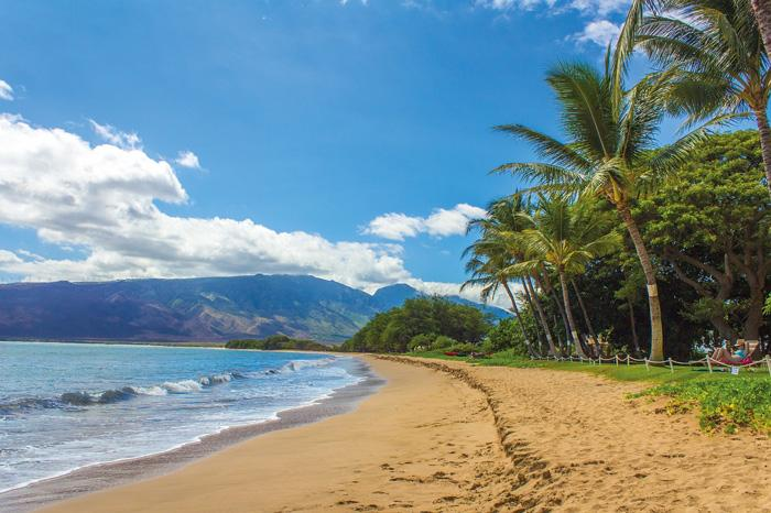 hawaii beach maui