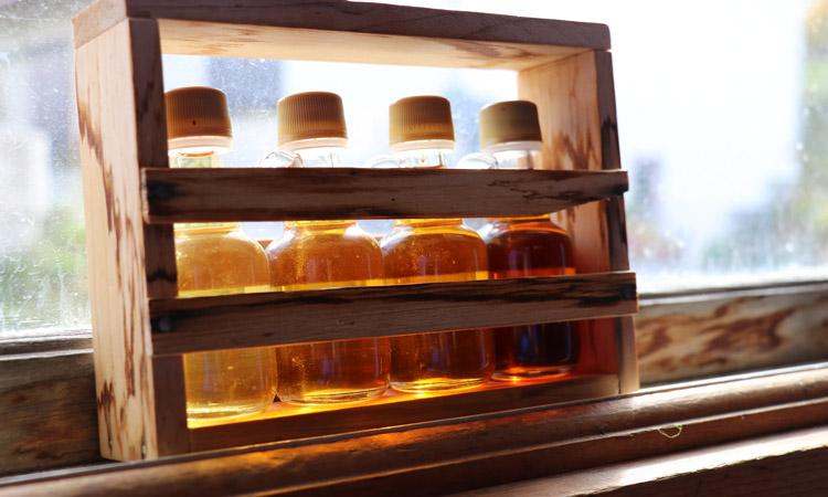 four different grades of maple syrup