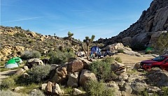 Camping at Joshua Tree National Park