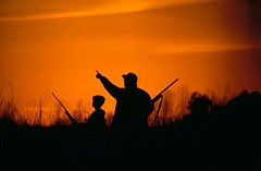 Cool Father Son Guy Trip Ideas
