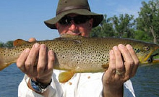 montana-fly-fishing-forresters